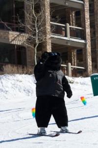 Skiing as a Bear