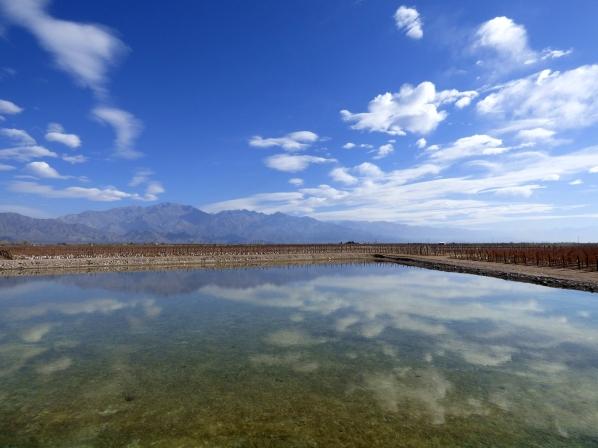 Bodega O. Fournier , Valle De Uco, Mendoza