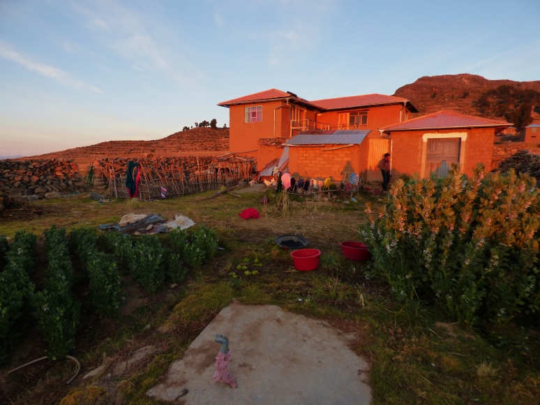 Here is the homestay we got while on Isla Amantani. Their goats, chickens, cats and plants all live in the front yard.