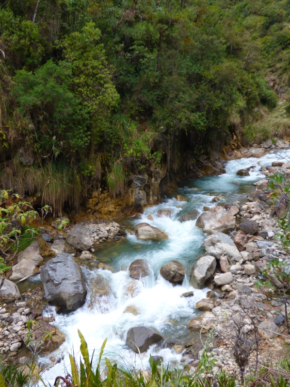 We walked along this river all the way to Aguas Caliented. Some parts were thin and shallow, others pooled with fish, and some flowing wide and smoothly. Every step of the way, it was beautiful.