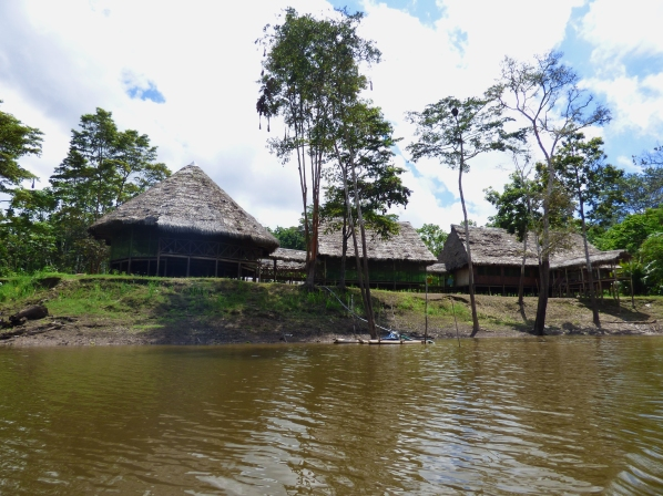 The lodge sits right on the river, with screens as windows and the local cat.